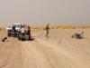 Umfall in der Sahara