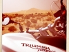 Triumph Tiger XC 800 in der Sahara